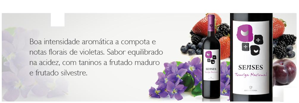 http://www.adegaborba.pt/loja/senses-touriga-nacional